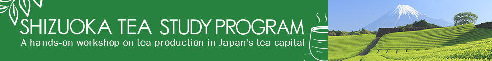 Shizuoka Tea Study Program A hands-on workshop on tea production in Japan's tea capital